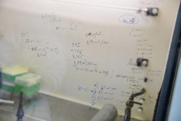 Інститут онкології